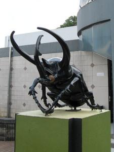 Kumbang tanduk (Chalcosoma caucasus) di depan Museum Serangga